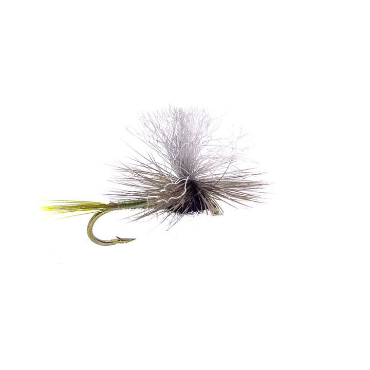 Category 3 Dead Cert - Dry Fly