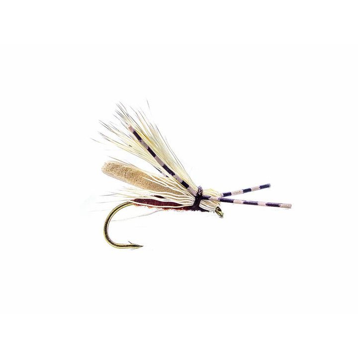 Category 3 Five By Five - Dry Fly