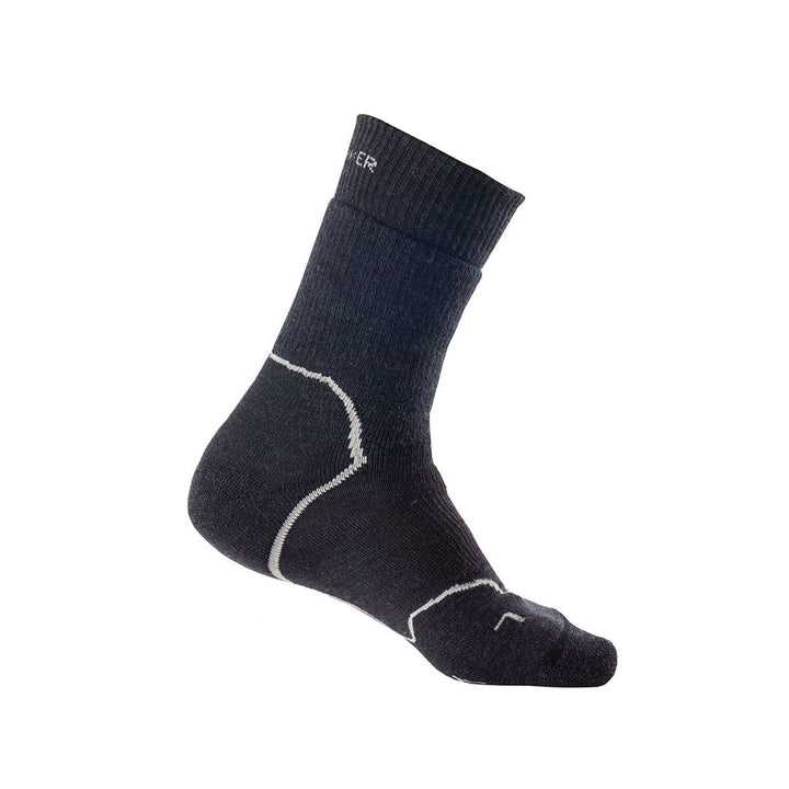 Icebreaker Men's Hike+ Heavy Cushion Crew Merino Wool Sock - Jet Heather/Twister