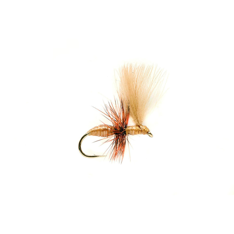 Fulling Mill Ant Tan CdC - Premium Dry Fly
