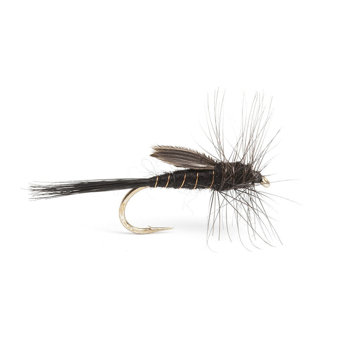 Fulling Mill Barry Lodge Emerger - Premium Dry Fly