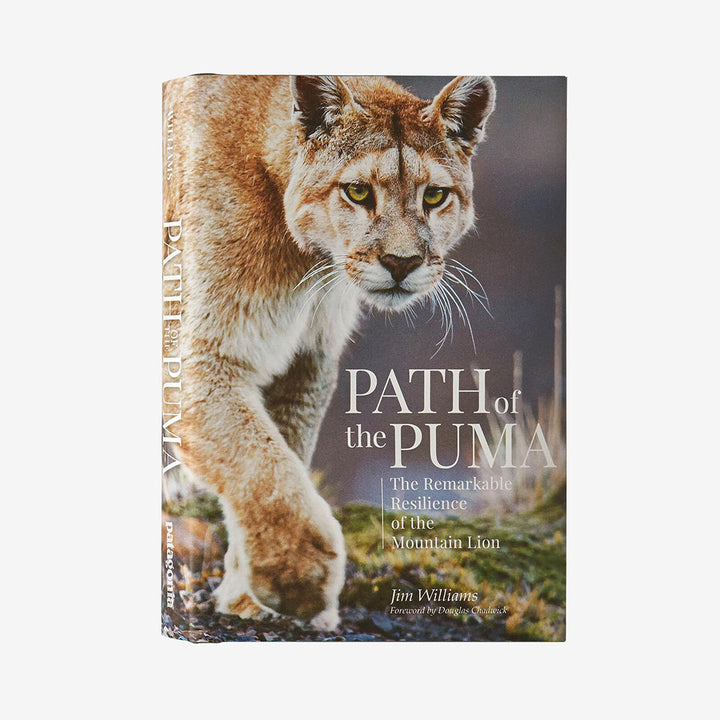 Path of the Puma - The Remarkable Resilience of the Mountain Lion - cover