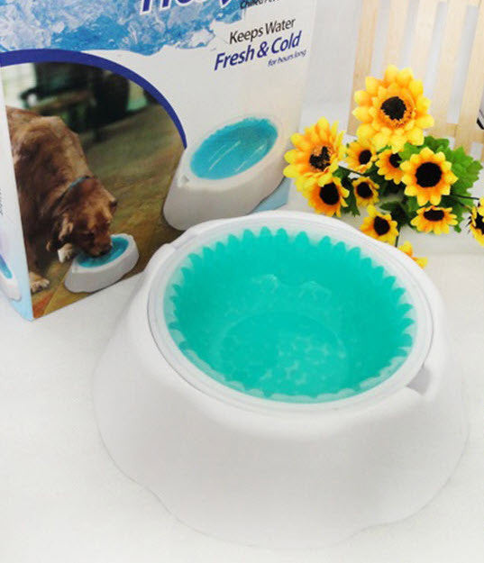 Summer Time! Cool and Chilled Dog/Cat Water Bowl