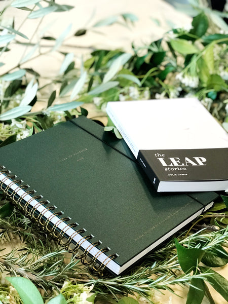 PREORDER: Days of Possible Diary 2019 (limited edition)