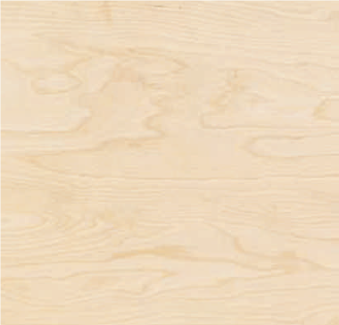 2.5mm Birch Plywood