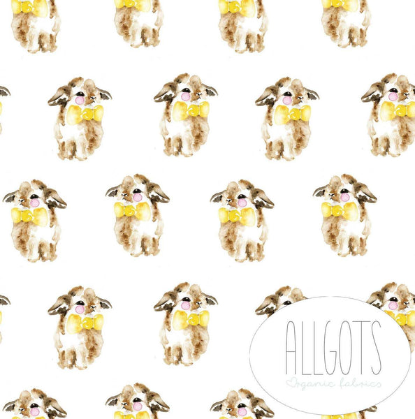PRESALE!!! - Organic Cotton Jersey Fabric - Bonnie by Allgots