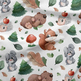 Sweatshirt Knit - Cute Forest Animals-Jelly Fabrics
