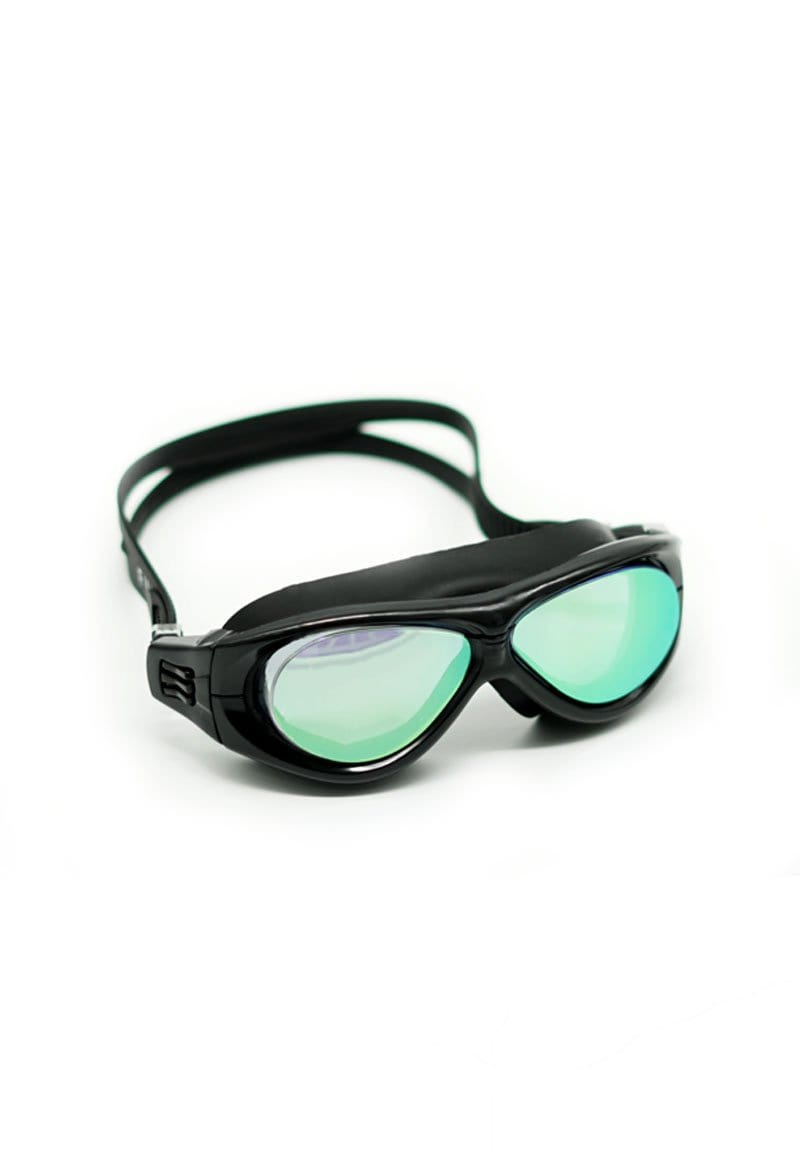 Wraparound Tinted Goggles in Black