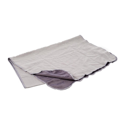 Coolite Sports Towel In Light Grey