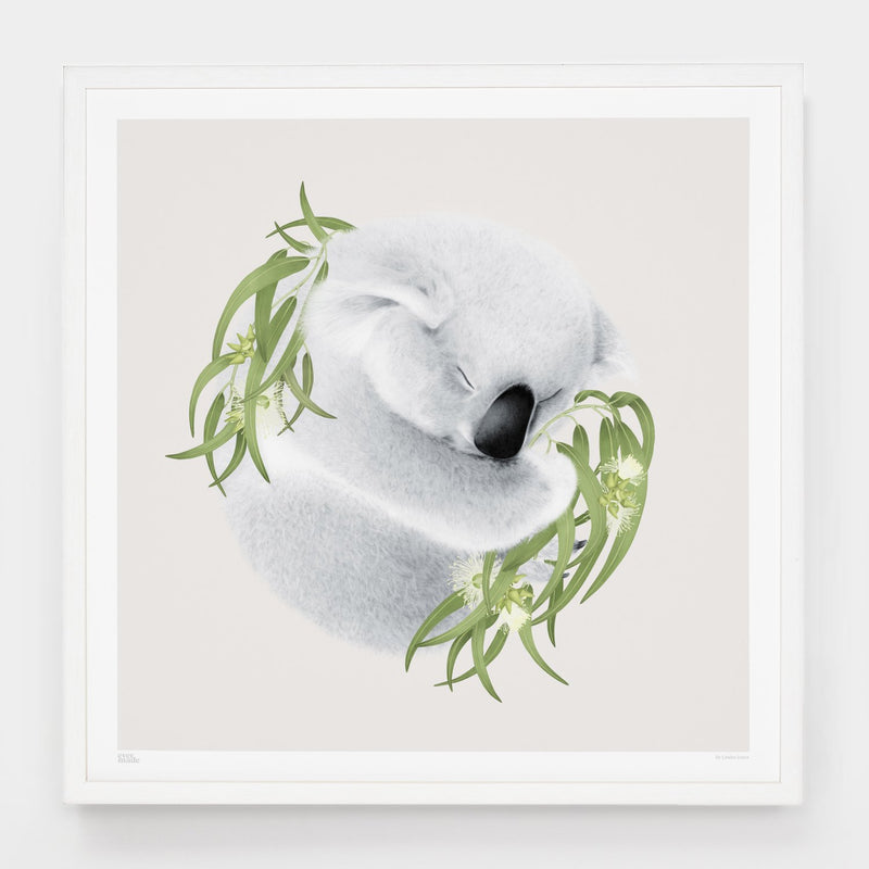 Evermade - Louise Jones - 'Koala'