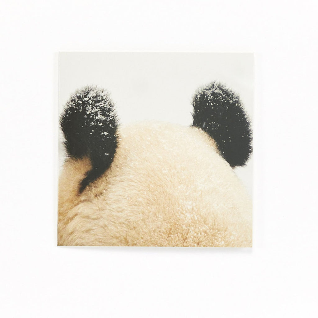 Ears - pack of 10 Christmas Cards