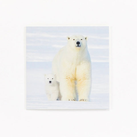 Family Christmas - Pack of 10 Christmas Cards