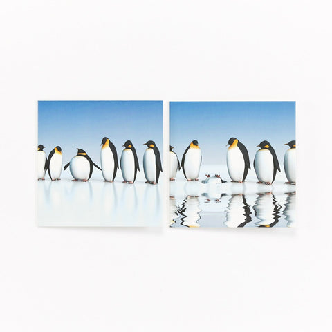 Fun Penguins - Pack of 10 Christmas Cards
