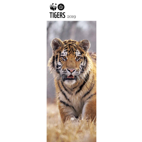 Tigers Slim Wall Calendar 2019
