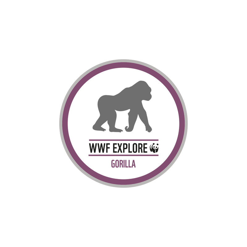 Explore Sew On Badge