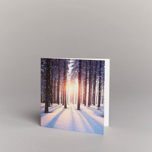 Dreaming of a White Christmas (pack of 10) Christmas cards