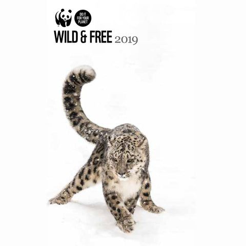Wild & Free Slim Pocket Diary 2019