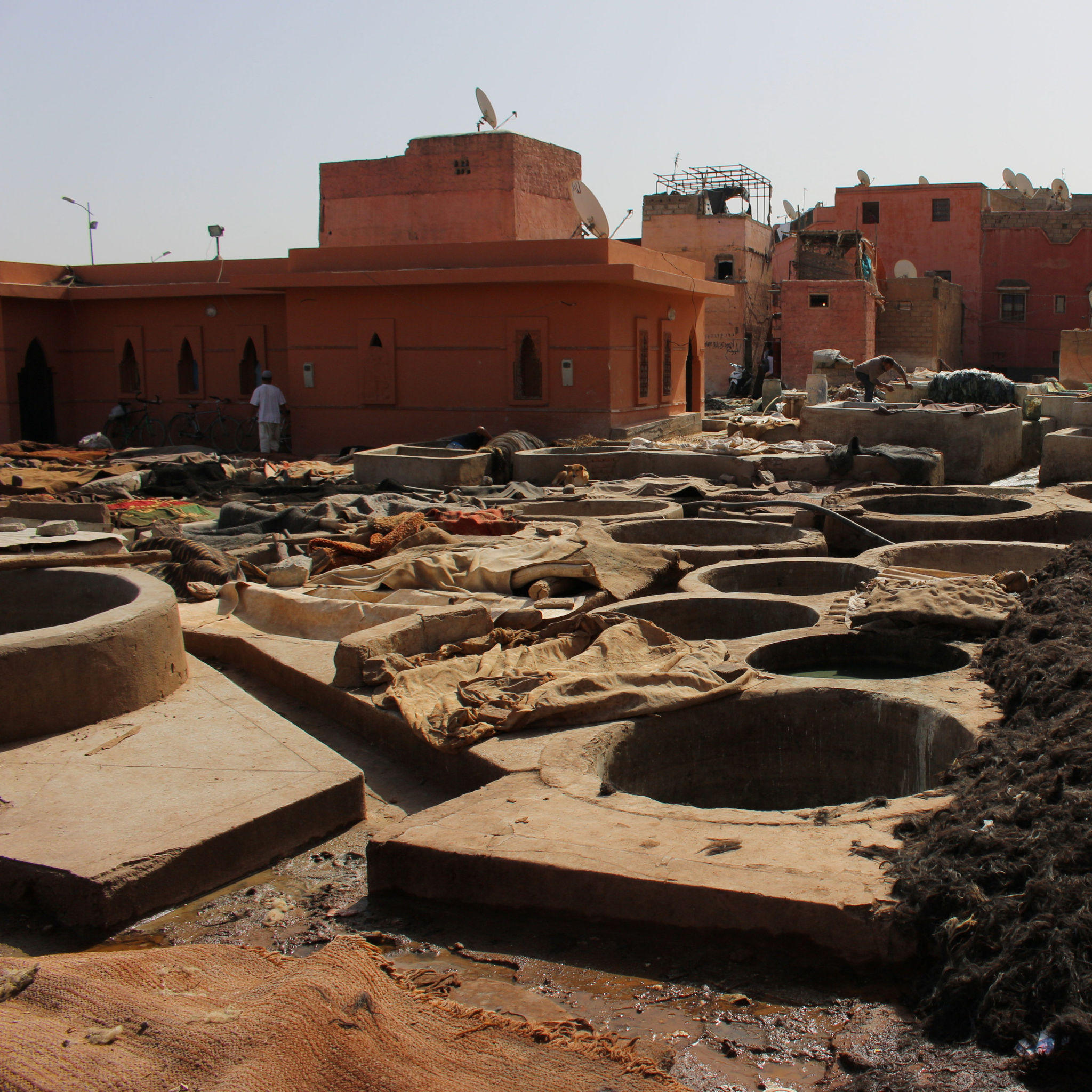 The ancient tannery in Marrakech creating vegetable tanned leather