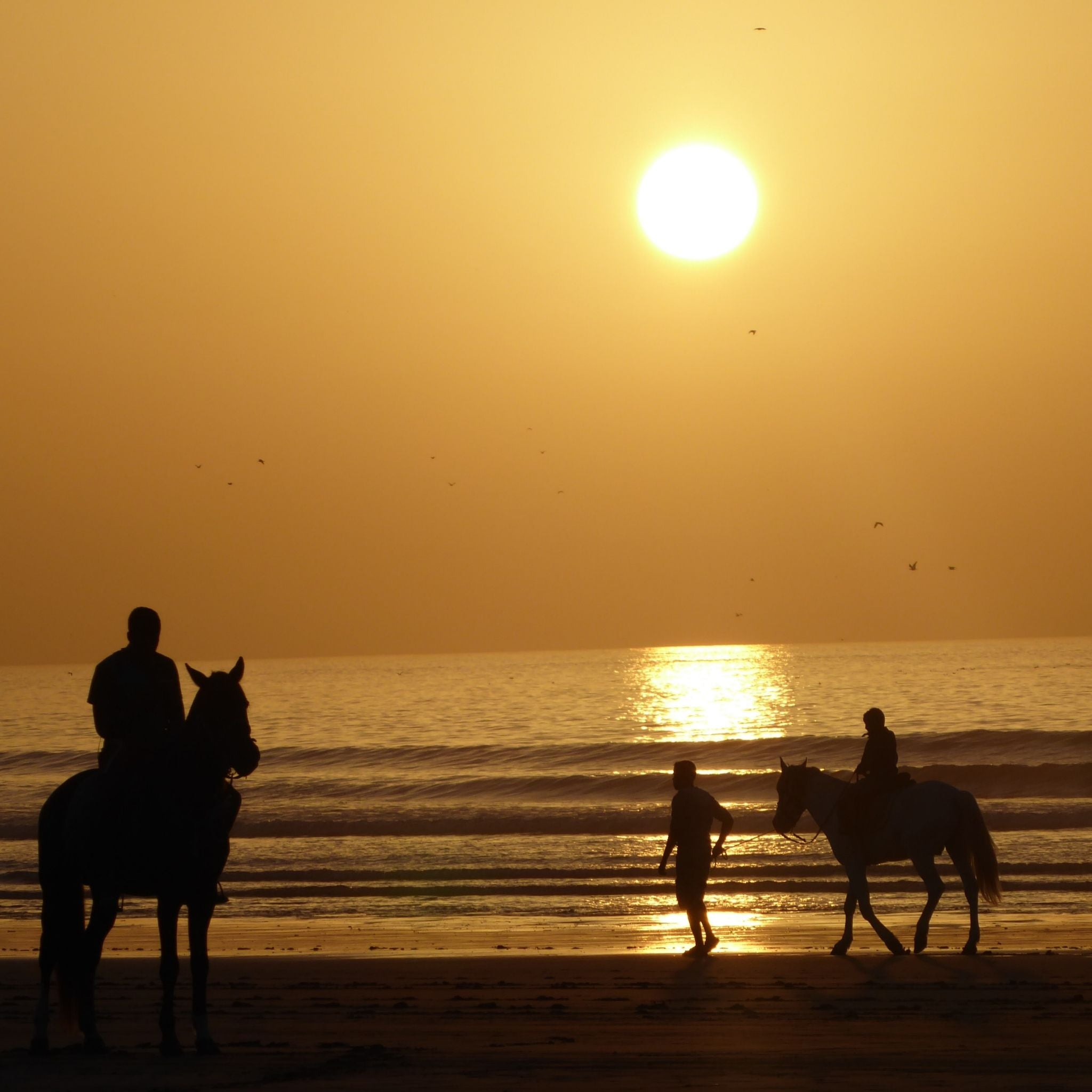 Sunset in Essaouira Morocco