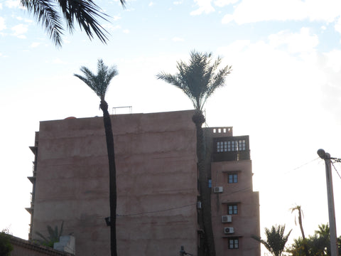 A building in Marrakech Morocco, The walls are coloured pink, there are two very tall palm trees