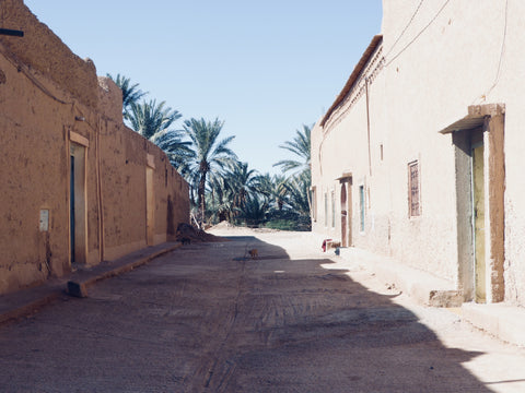 The streets of a small town in Merzouga Morocco, at the end of the dusty street there are tall palm trees