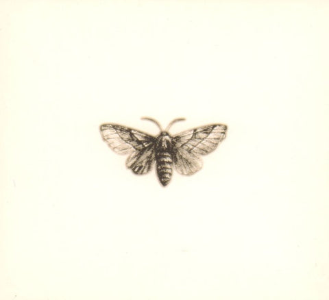 Hello Moth-Infinitely Repeated-CD Album