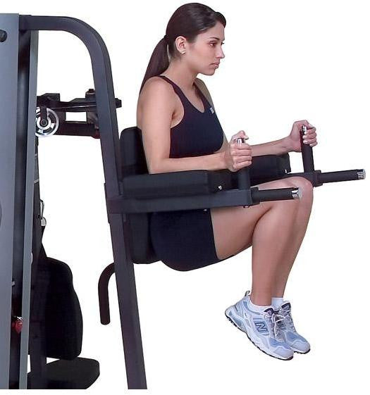 Vertical Knee Raise and Dip Station for G9S
