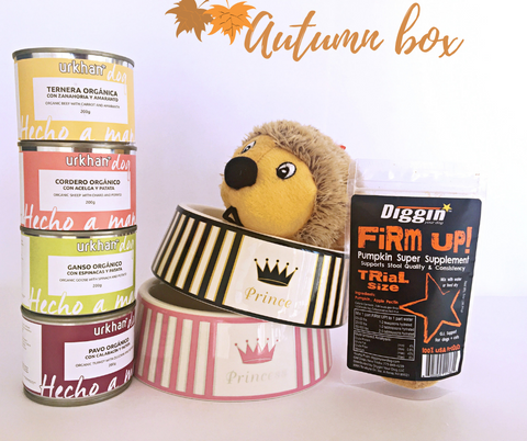 Autumn Box Kaniber