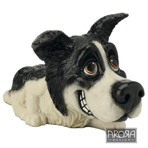 Border Collie (2)