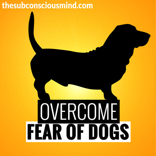Overcome Fear of Dogs