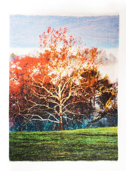 White Tree in Mist - The Sheila Johnson Collection