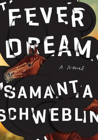 Fever Dream by Samantha Schweblin