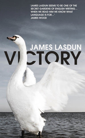 Victory by James Lasdun