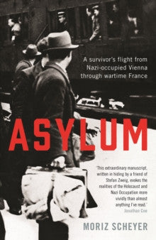 Asylum by Moriz Scheyer