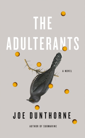 The Adulterants by Joe Dunthorne