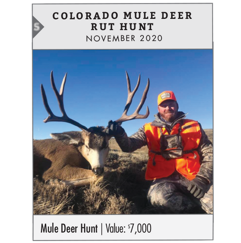 Silver Prize: Colorado Mule Deer Rut Hunt