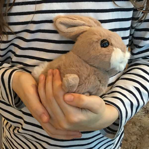 Bukowski Brown Toy Rabbit Hera held