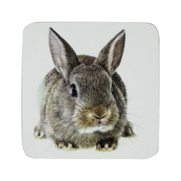 Bunny Rabbit Coaster front