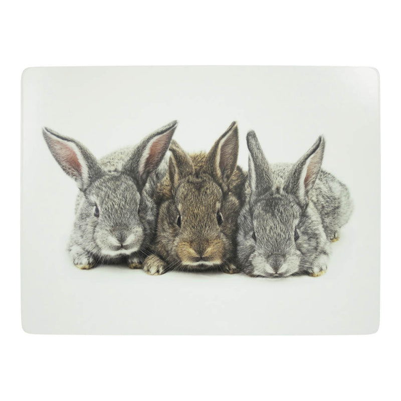 Bunny Rabbits Placemat front