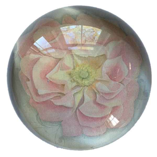 RHS Flower Paperweight - pink rose