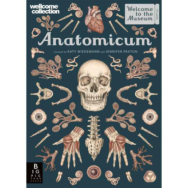 Welcome To The Museum - Anatomicum