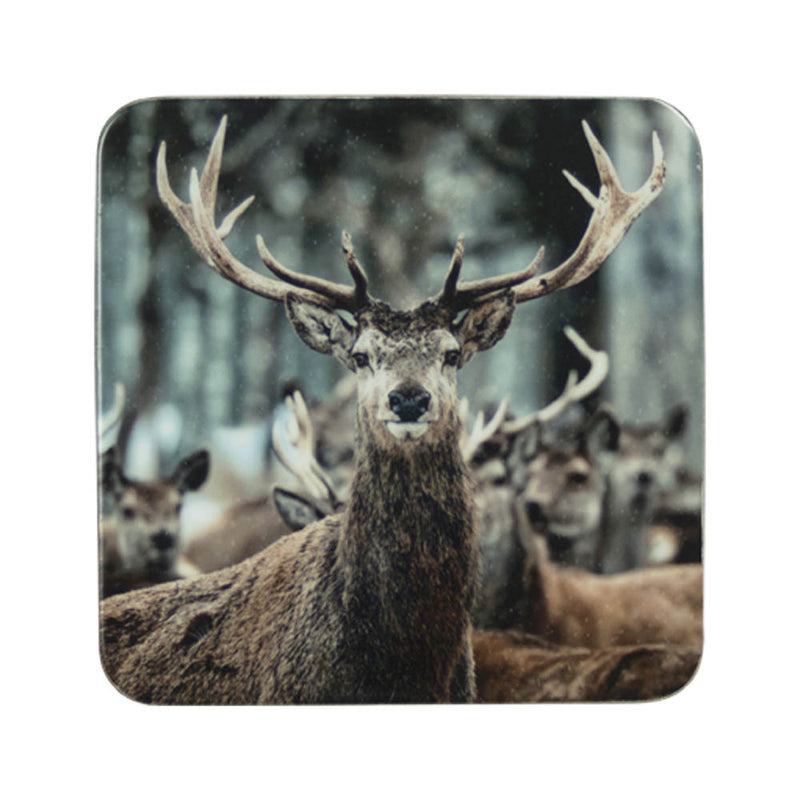 Winter Deer Coaster front