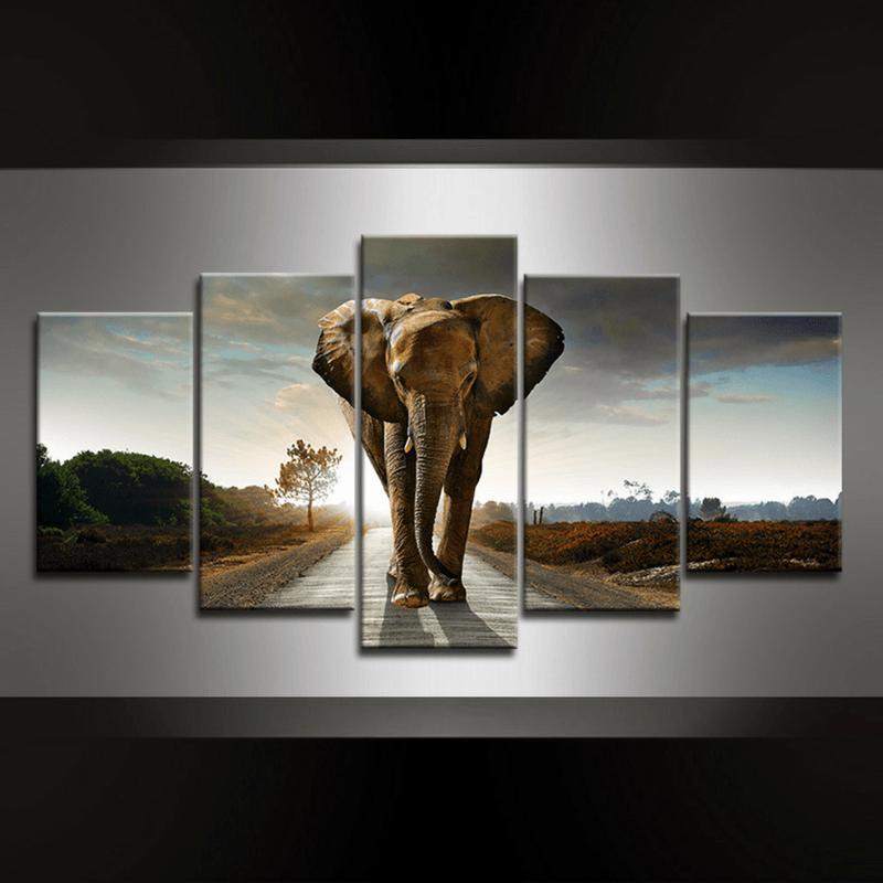5 Piece Elephant Canvas Wall Art