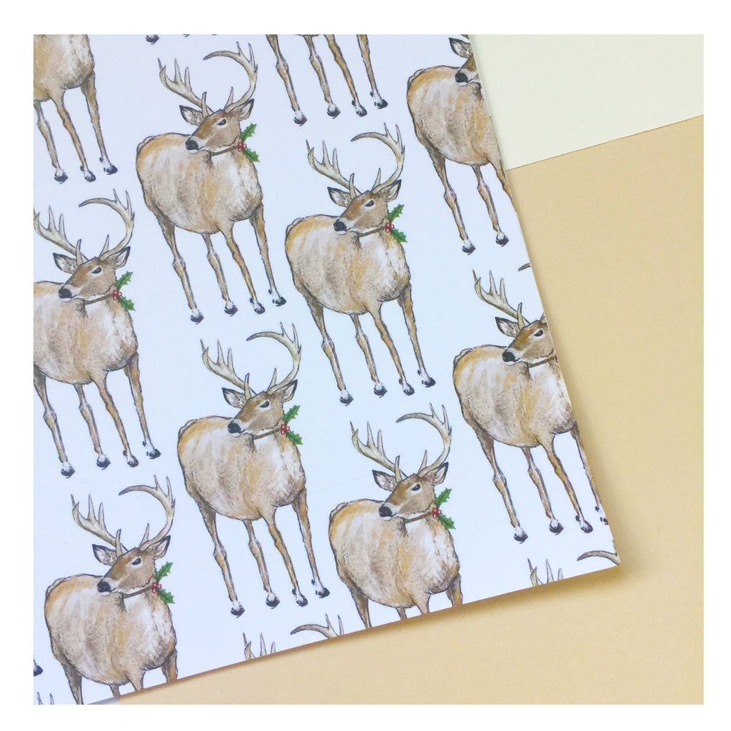 Christmas Deer | Gift Wrap | Illustrated Animals
