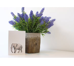 Elephant | Greeting Cards | Illustrated Animals - Merri | Illustration | Stationery + Gifts | Manchester