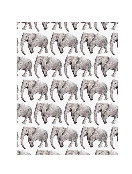 Elephant | Illustrated Animal Wall Print - Merri | Illustration | Stationery + Gifts | Manchester
