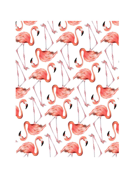 Flamingo | Illustrated Animal Wall Print - Merri | Illustration | Stationery + Gifts | Manchester