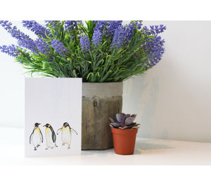Penguin | Greeting Cards | Illustrated Animals