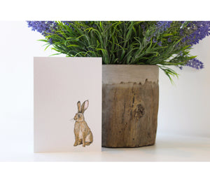 Rabbit | Greeting Cards | Illustrated Animals - Merri | Illustration | Stationery + Gifts | Manchester