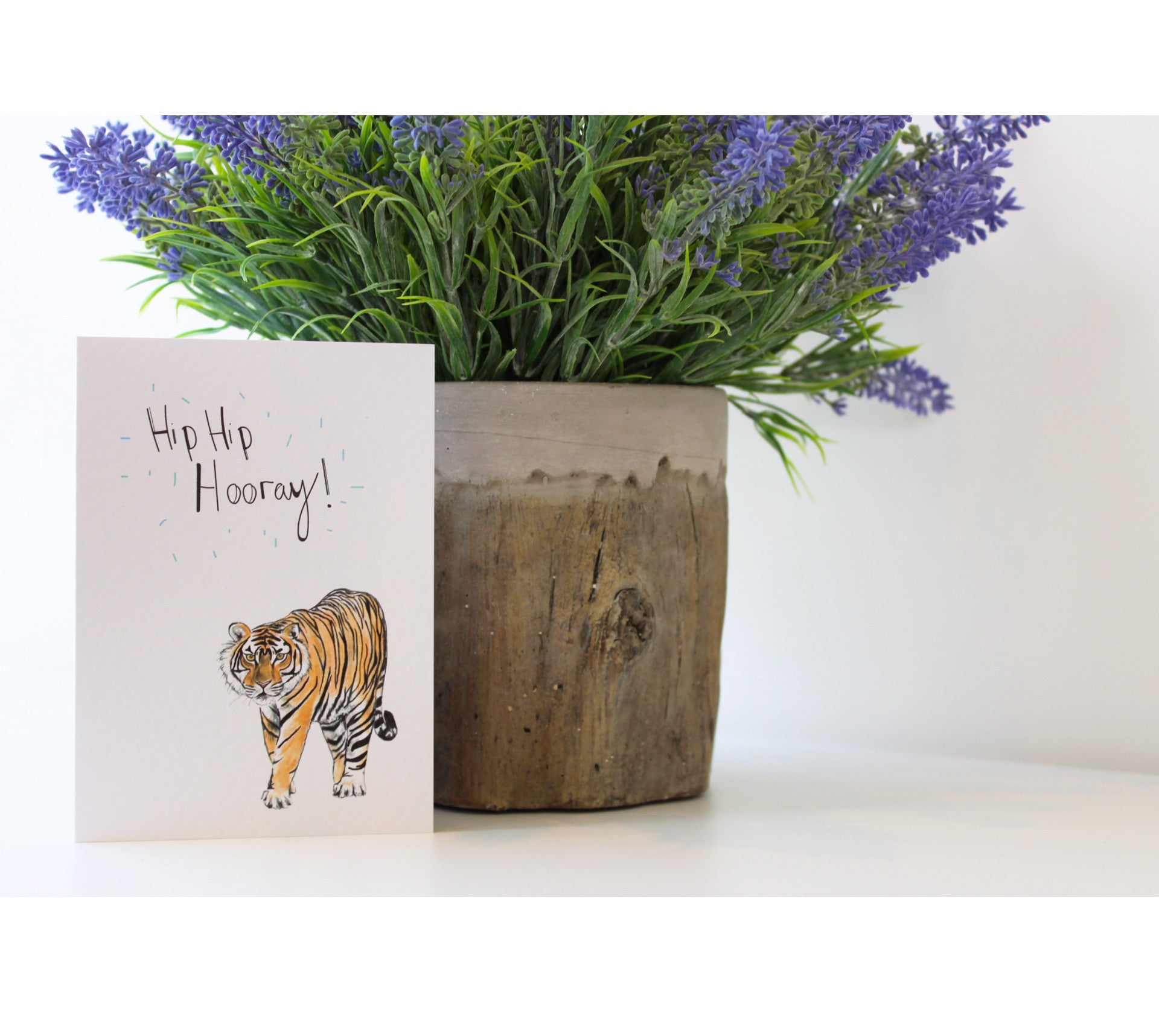 Hooray Tiger | Greeting Cards | Illustrated Animals - Merri | Illustration | Stationery + Gifts | Manchester
